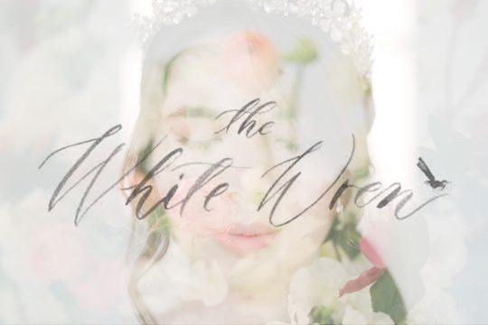 The White Wren